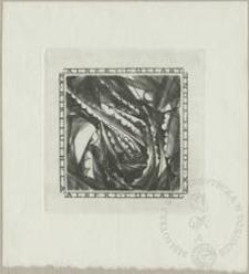 Ex collectione Alberta Collarta IV
