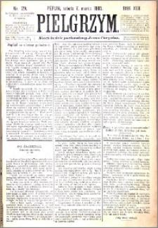Pielgrzym, pismo religijne dla ludu 1885 nr 29