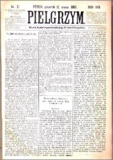 Pielgrzym, pismo religijne dla ludu 1885 nr 31