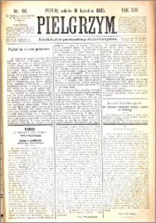 Pielgrzym, pismo religijne dla ludu 1885 nr 46