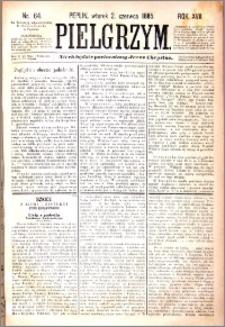 Pielgrzym, pismo religijne dla ludu 1885 nr 64