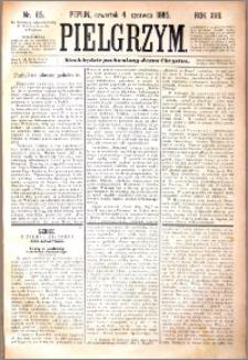 Pielgrzym, pismo religijne dla ludu 1885 nr 65