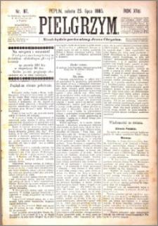 Pielgrzym, pismo religijne dla ludu 1885 nr 87