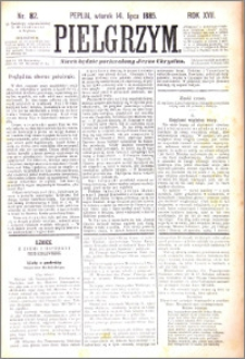 Pielgrzym, pismo religijne dla ludu 1885 nr 82