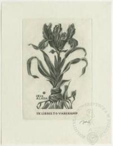 Ekslibris T. S. Varekampa II (Iris alata)