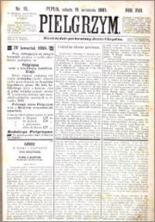 Pielgrzym, pismo religijne dla ludu 1885 nr 111