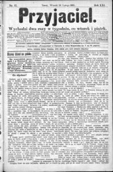 Przyjaciel : pismo dla ludu 1895 nr 17