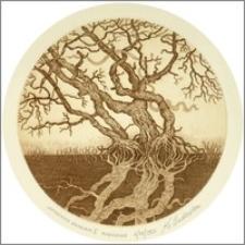 Zatopione drzewa II