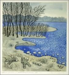 """Brzeg jeziora II (Z cyklu """"Miniatury mazurskie"""")"""