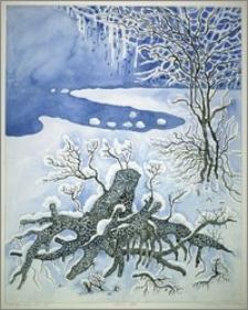 W śniegowym snie VI