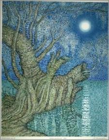 Księżycowa noc III