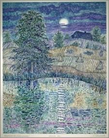 Księżycowa noc (widok z pomostu)