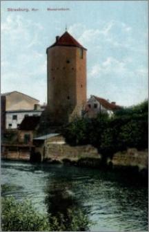 Brodnica : Wieża Mazurska