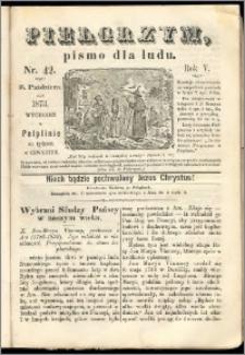 Pielgrzym, pismo religijne dla ludu 1873 nr 42