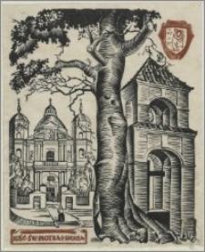 Kościół św. Piotra i Pawła w Wilnie