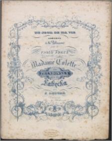 Un jour de ma vie : andante à la polacca : pour le piano forte composée et dediée à Madame Colette de Prendowska née de Łabęcka