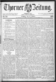 Thorner Zeitung 1876, Nro. 242