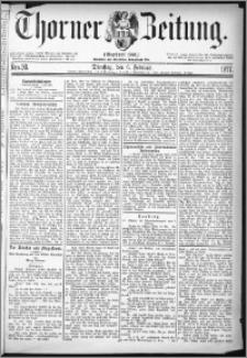 Thorner Zeitung 1877, Nro. 30